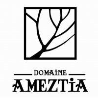 Domaine AMETZIA | AOC Irouléguy | Vins du Sud-Ouest | Pays Basque